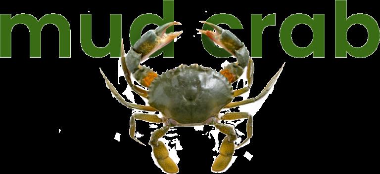 Mud crab at VGP Marine Kingdom