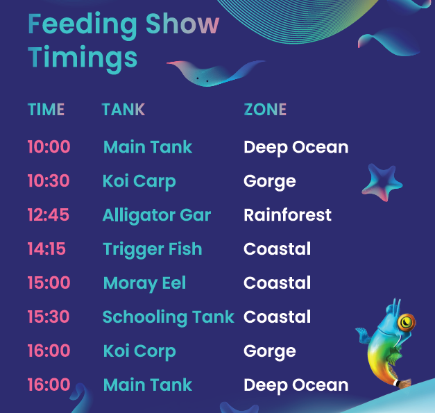 Under Water Feeding Show Timing